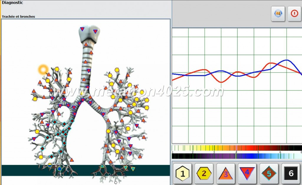 metapathia gr clinical 3d
